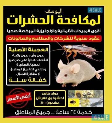 مكافحة حشرات واقوارض - محافظة الجهراء - مكافحة الحشرات - مقاولات وحرف -  خدمات - اعلانات الكويت