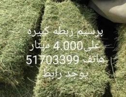 للبيع برسيم سوداني فاخر اخضر صافي الوزن