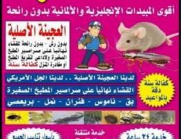 شركة المجد مكافحة الحشرات - محافظة الاحمدي - مكافحة الحشرات - مقاولات وحرف  - خدمات - اعلانات الكويت