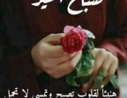 للايجار شقة فهد الاحمد // جابر العلي //ا